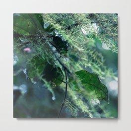Leaves in Morning Dew Metal Print