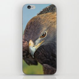 Golden Eagle iPhone Skin