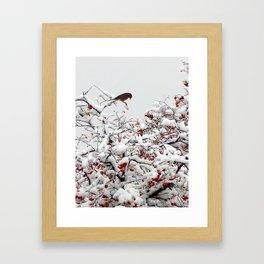 A Little Bird So Cheerfully Sings Framed Art Print