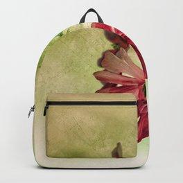 Campion Inversion Backpack