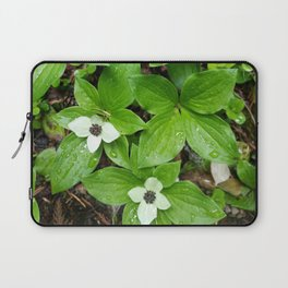 Canadian bunchberry Laptop Sleeve
