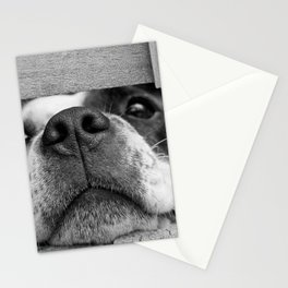 dog looking through fence Stationery Cards
