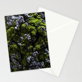 Barnacle Woodlands Stationery Cards