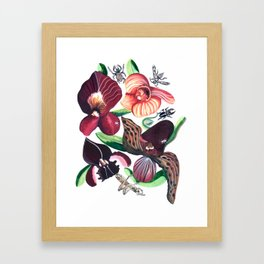 Orchid Cafe Framed Art Print
