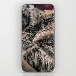 Moses the cat iPhone Skin