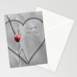 Valentines Ladybug Stationery Cards