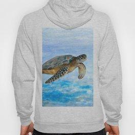 Turtle 1 Hoody