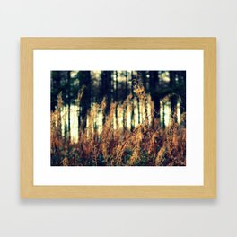 Spindles Framed Art Print