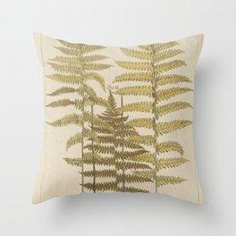 Vintage Fern Botanical Throw Pillow