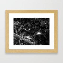 Missisquoi River in Vermont - 2 BW Framed Art Print