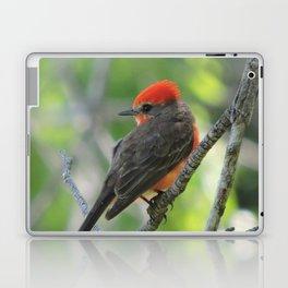 Vermilion Flycatcher Laptop & iPad Skin