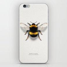 Bombus Lucorum iPhone Skin