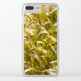 Golden wheat Clear iPhone Case