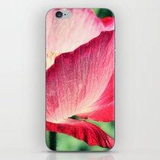 Red Poppy in Sunlight iPhone & iPod Skin