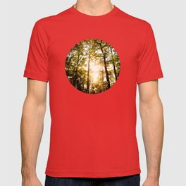 Sunset Glow T-shirt