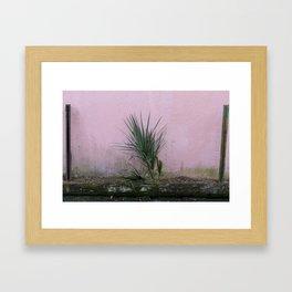 Charleston, SC Foliage Framed Art Print