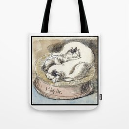 Mama Cat with Kitten in a Wicker Basket Tote Bag