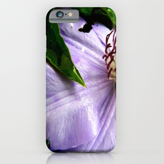 Raindrops on Roses iPhone & iPod Case