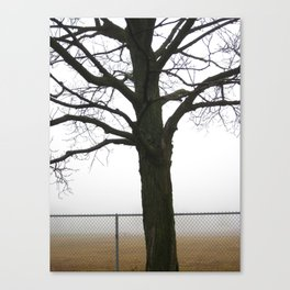 It Sends The Fog To Fetch Me Canvas Print