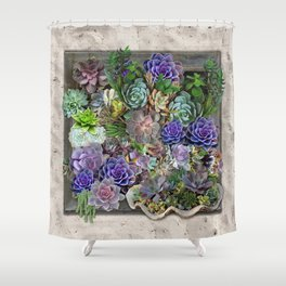 South Africa's Succulents Shower Curtain