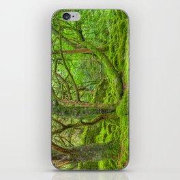 Emerald Forest iPhone Skin