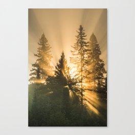 Shine your light. Canvas Print