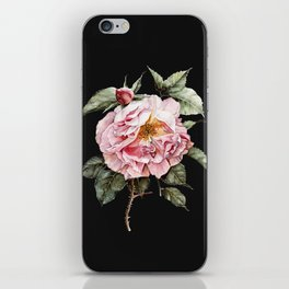 Wilting Pink Rose Watercolor on Charcoal Black iPhone Skin