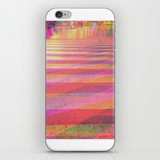 Multiplicitous extrapolatable characterization. 13 iPhone & iPod Skin