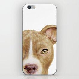 Pitbull light brown Dog illustration original painting print iPhone Skin