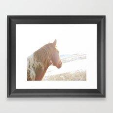 Sun + Horse Framed Art Print