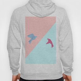 Paper pigeons blue and pink Hoody