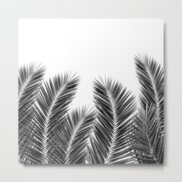 White Palm Skies Metal Print
