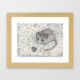 Counting bogongs Framed Art Print