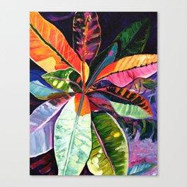 Kauai Croton Leaves Canvas Print