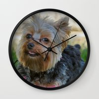 yorkie Wall Clocks featuring Little Yorkie by IowaShots