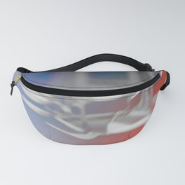Carousel Fanny Pack
