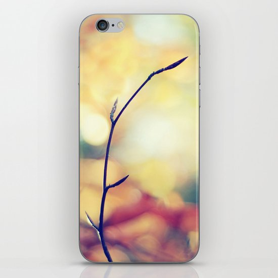 Autumn Palette iPhone & iPod Skin