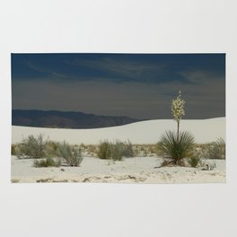 Desert Beauty Rug