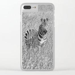Zebra in high grass Clear iPhone Case