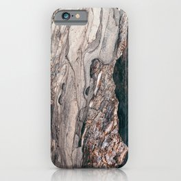 Metamorphic #2 iPhone Case