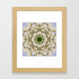 White Lilac 2 Framed Art Print