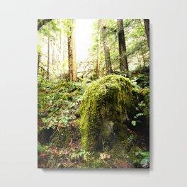 Mossy Boulder, Oregon, trail Metal Print
