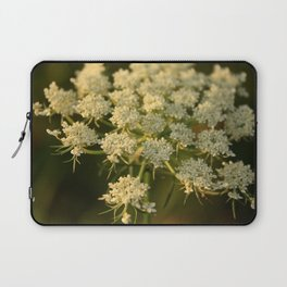 Queen Anne's Lace Flower Laptop Sleeve