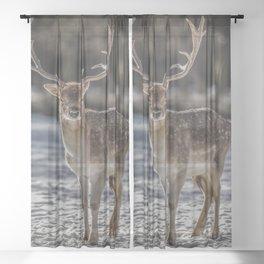 Hirsch Deer Sheer Curtain