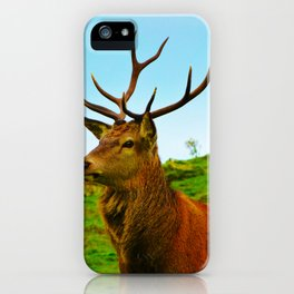 The Stag on the hill iPhone Case