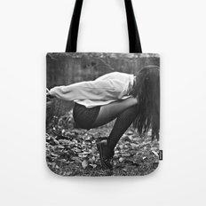 aequilibrium Tote Bag