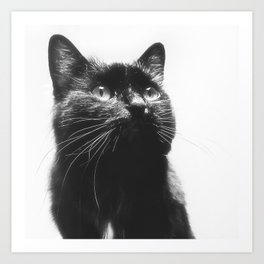 Here's lookin' at Mew too! Art Print