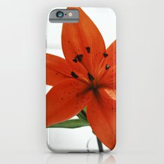 Embrace iPhone 6s Slim Case