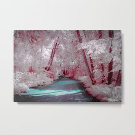 Magical Path, Michigan Metal Print