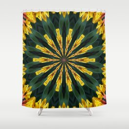 A Fanfare of Gaillardia Flowers Shower Curtain